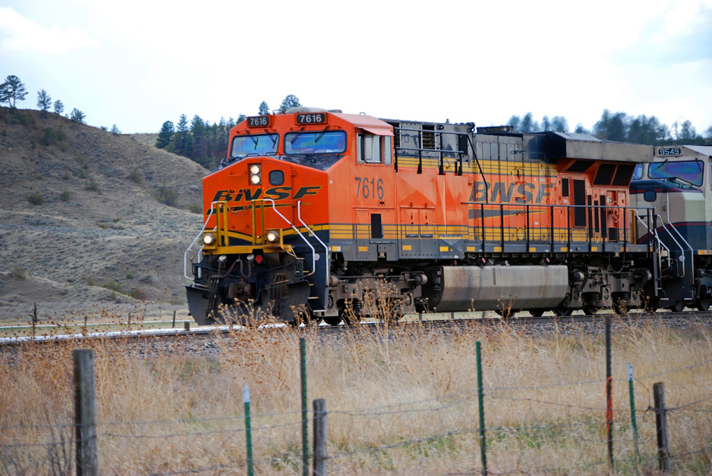 Chasing Montana Merriams