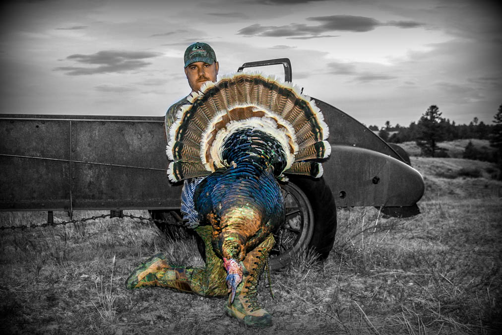 Grant Carmichael Turkey Hunting Montana